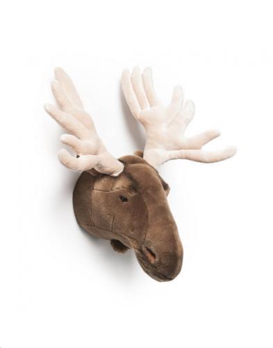 Trophy eland groot Alfred