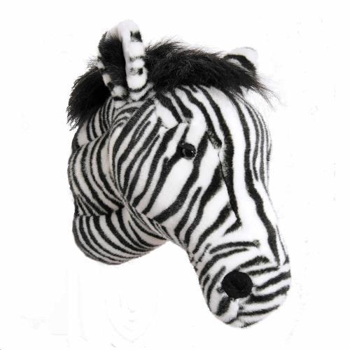Trophy zebra Daniel